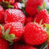 Cours patisserie fraisier